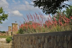 Panther Creek Estates Red Yucca by the Fountain