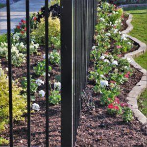 Eldorado Fairways pool flower beds spring color 2020 3